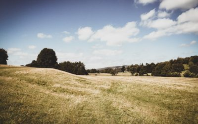 1% of England's Green Belt land could be turned into 2.3 million new homes